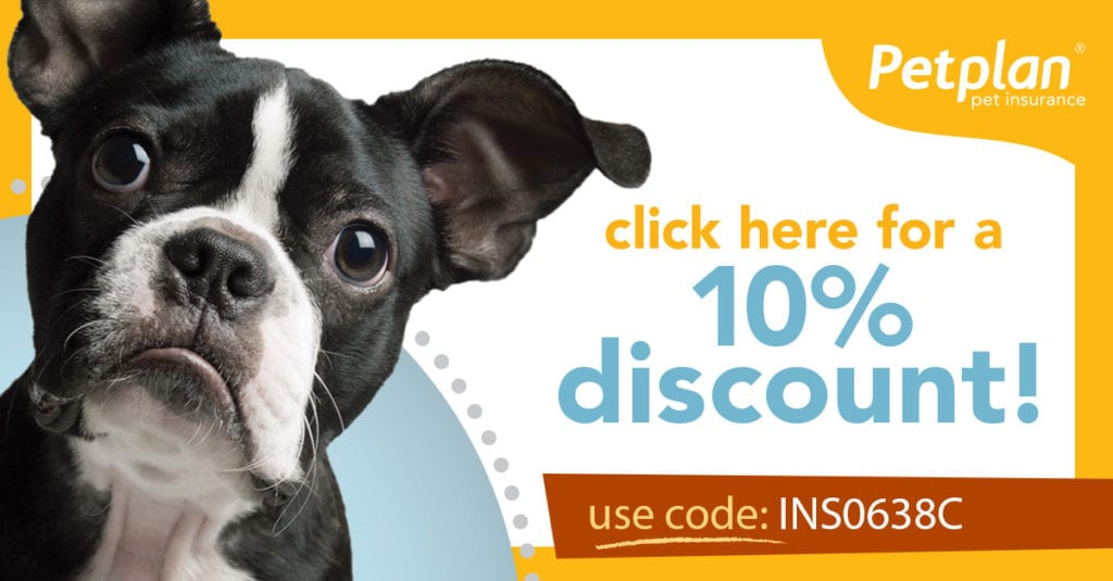 Petplan Pet Insurance from lancaster insurance agency